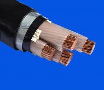 交联聚乙烯(聚氯乙烯)绝缘电力电缆